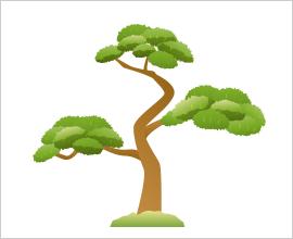 庭木のチェック